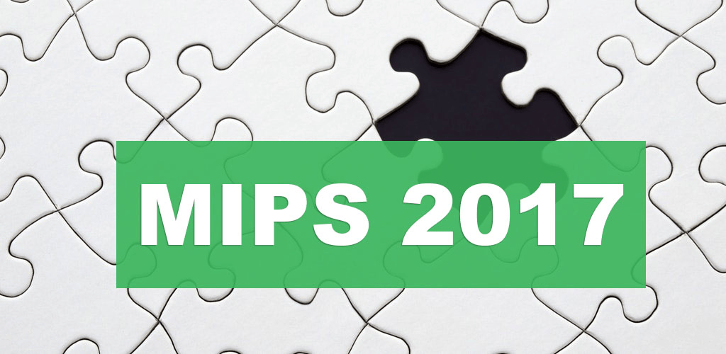 MIPS 2017